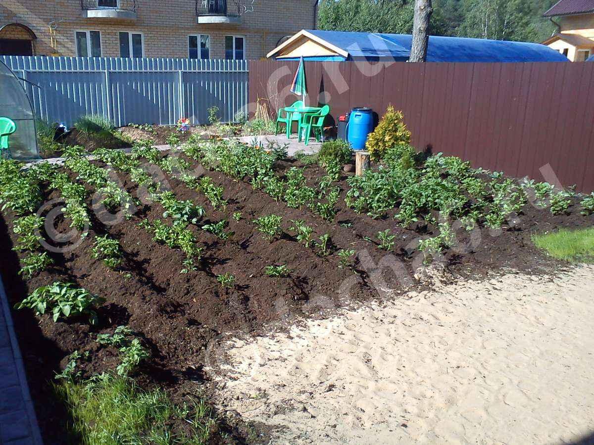 Для чего нужен песок в огороде?