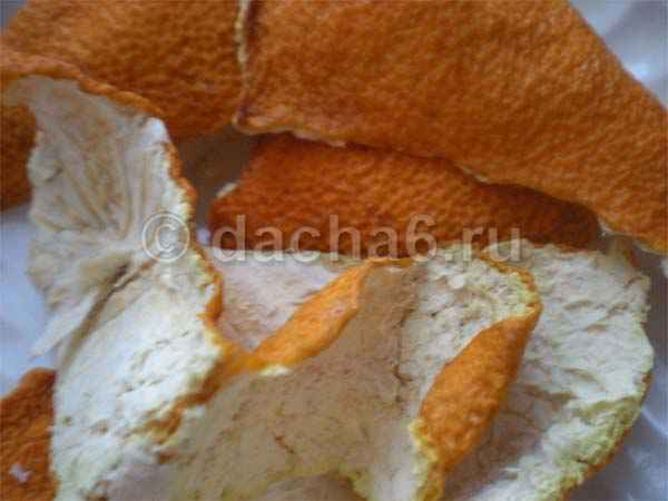 Использование мандариновых корок для комнатных растений