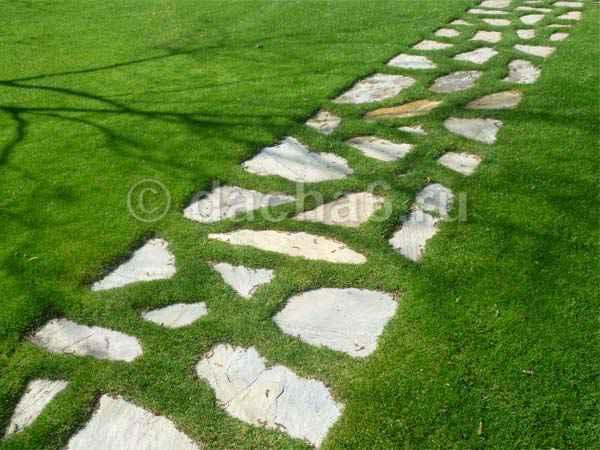 Как избавиться от травы между плиткой