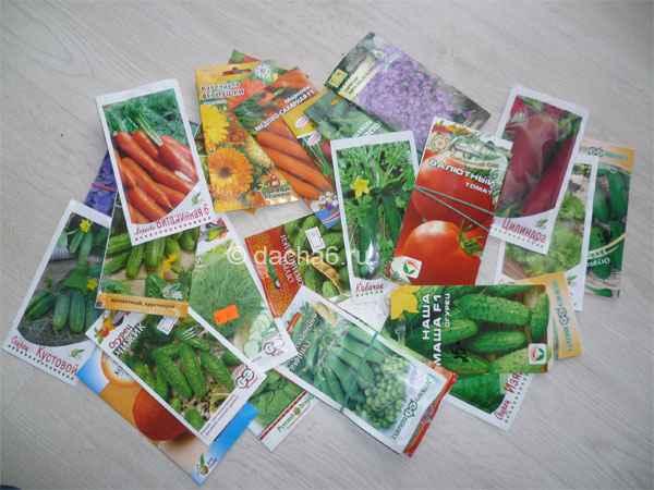 Какие семена купить для огорода