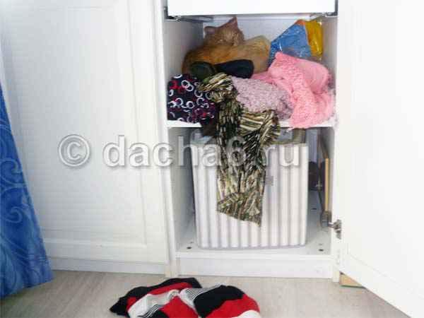 Кот спрятался в шкафу и не выходит