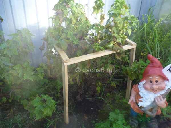 Подпорки для деревьев и ягодных кустарников 100