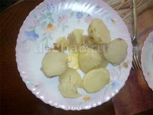 Зачем сажать «свою» картошку?