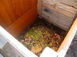Посев горчицы осенью когда перекапывать