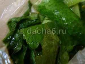 Рецепт хрустящих малосольных огурцов быстрого приготовления в пакете и банке